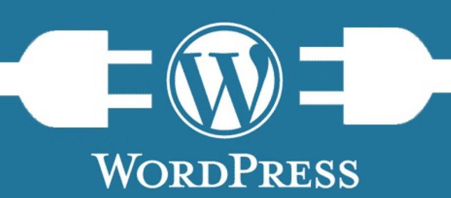disadvantage of wordpress plugins
