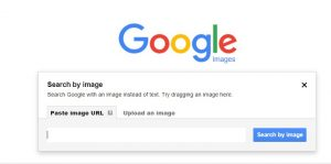 search by image option